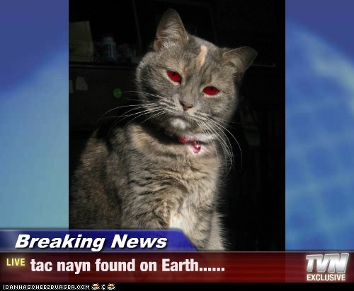 Breaking News - tac nayn found on Earth......