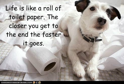 Life is like a roll of toilet paper. The closer you get to the end the faster it goes.