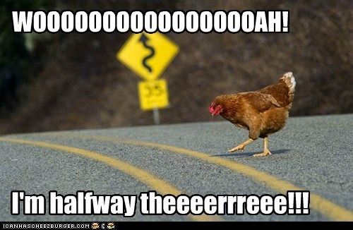 bon jovi,chickens,halfway,jokes,lyrics,roads,Songs,why did the chicken cross