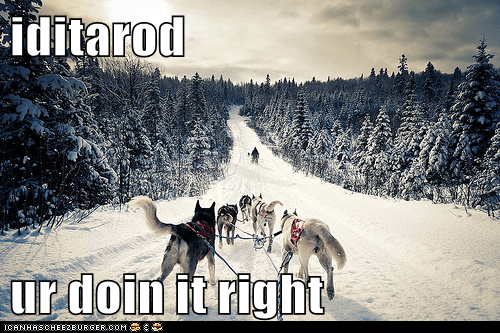 iditarod  ur doin it right