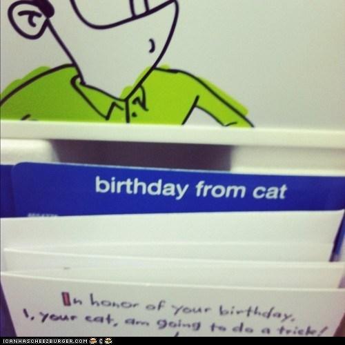 birthday cards,birthdays,cards,Cats,Sad