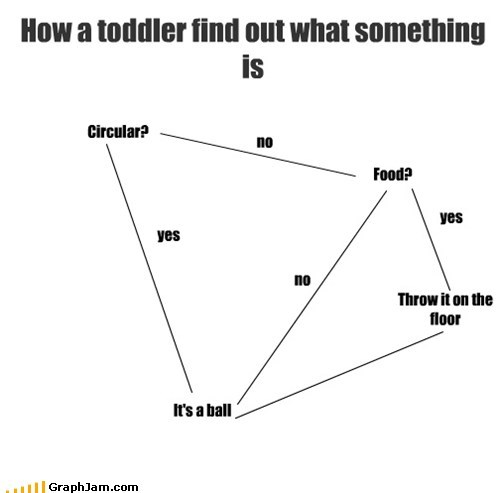 How a toddler find out what something is