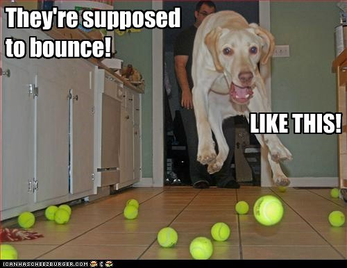 They're supposed to bounce!