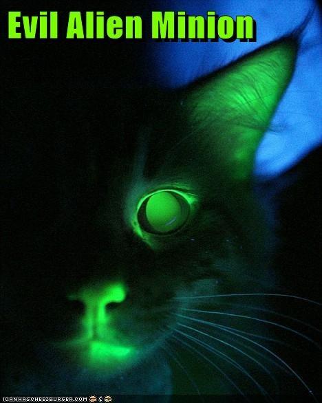 Evil Alien Minion
