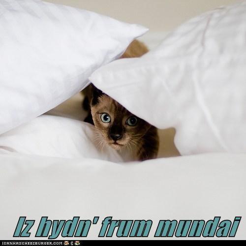 Iz hydn' frum mundai