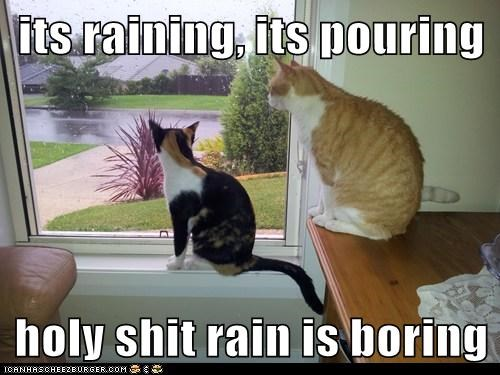 its raining, its pouring  holy shit rain is boring
