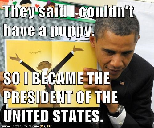 barack obama,dogs,political pictures,puppy