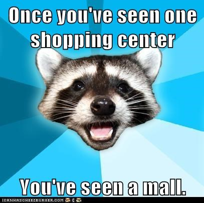 Animal Memes: Lame Pun Coon - You'll Probably Want to Stay Away After That