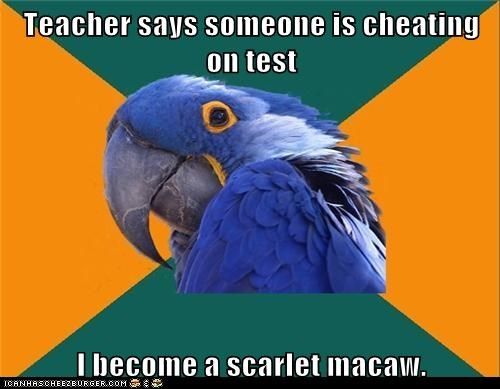 blushing,change,cheating,color,guilty,Paranoid Parrot,test