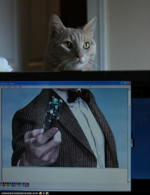 best of the week,Cats,computers,doctor who,Matt Smith