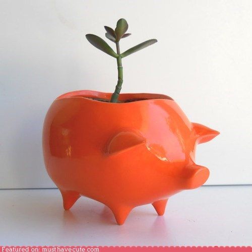 ceramic,orange,pig,plant,planter