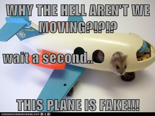 WHY THE HELL AREN'T WE MOVING?!?!? wait a second.. THIS PLANE IS FAKE!!!