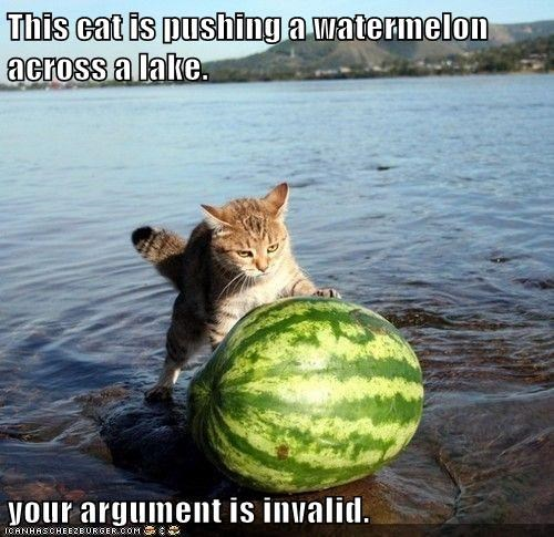 across,argument,best of the week,caption,cat,Cats,Hall of Fame,invalid,lake,pushing,watermelon,your argument is invalid