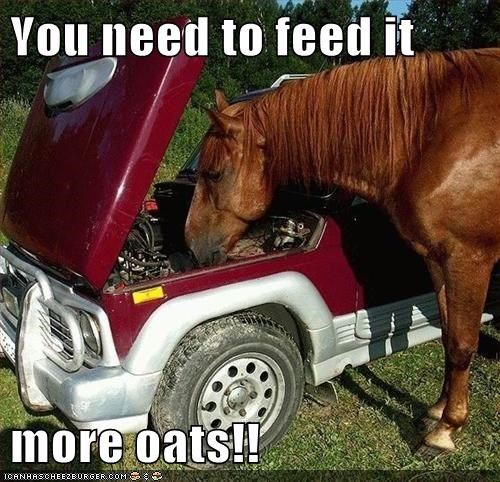That Poor Horsepower Must Be Starving!