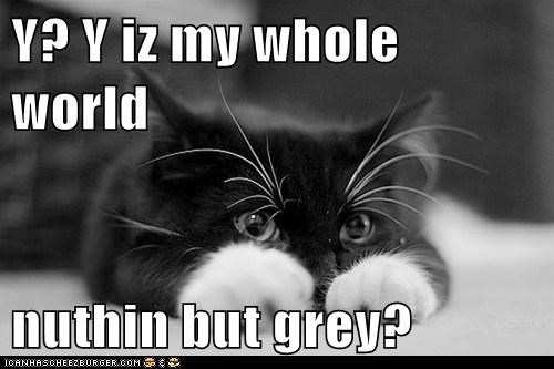 Y? Y iz my whole world  nuthin but grey?