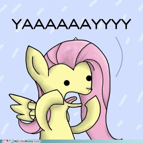 fluttershy,gay seal,meme,yay