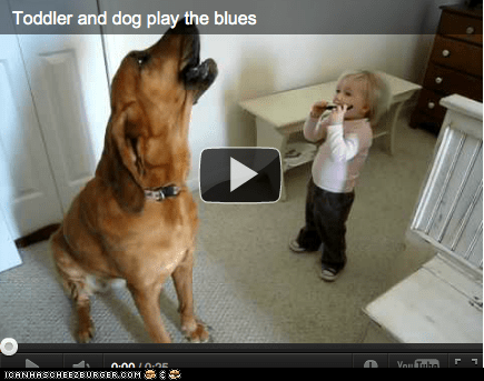 Around the Interwebs: Goggie and Toddler Sing the Blues