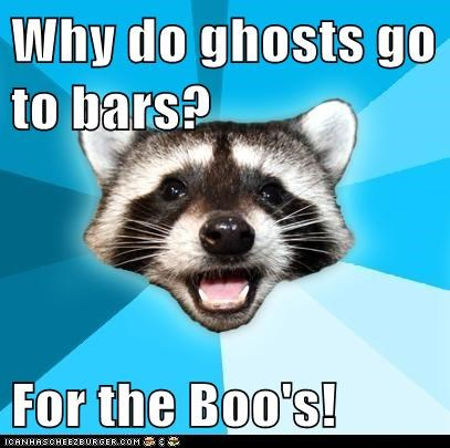 alcohol,bars,boo,drinking,ghosts,Hall of Fame,Lame Pun Coon,Memes,puns,raccoons