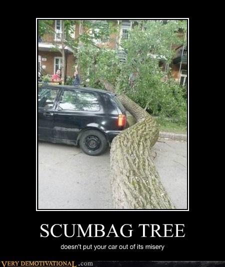 SCUMBAG TREE