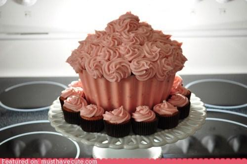 cake,cupcakes,epicute,frosting,pink,strawberry,swirls