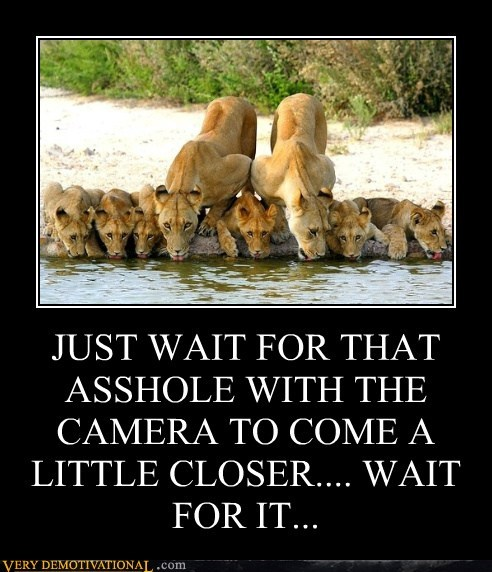 JUST WAIT FOR THAT A$$HOLE WITH THE CAMERA TO COME A LITTLE CLOSER.... WAIT FOR IT...