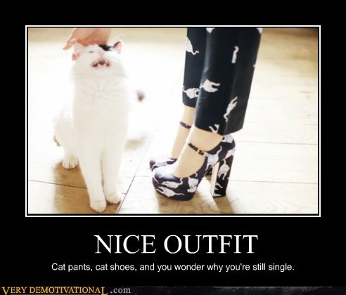 cat,crazy lady,hilarious,outfit,single,wtf