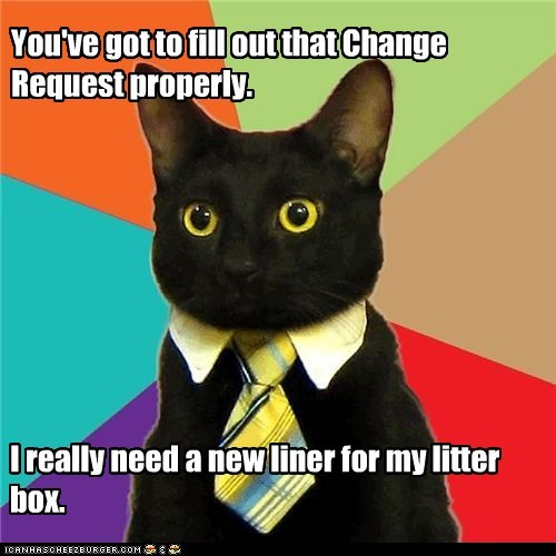 Business Cat Tells You What He Really Thinks