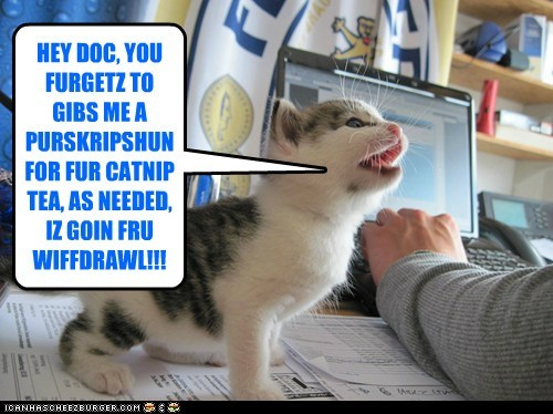 HEY DOC, YOU FURGETZ TO GIBS ME A PURSKRIPSHUN FOR FUR CATNIP TEA, AS NEEDED, IZ GOIN FRU WIFFDRAWL!!!