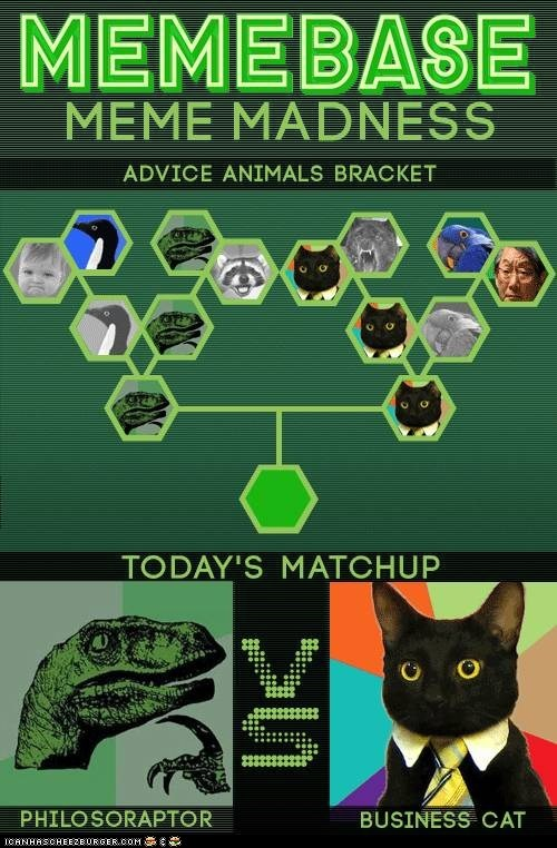 Meme Madness: Philosoraptor vs. Business Cat