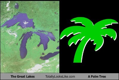 The Great Lakes Totally Looks Like A Palm Tree