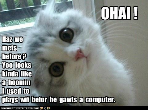 Even the youngest kittehs can master sarcasm.