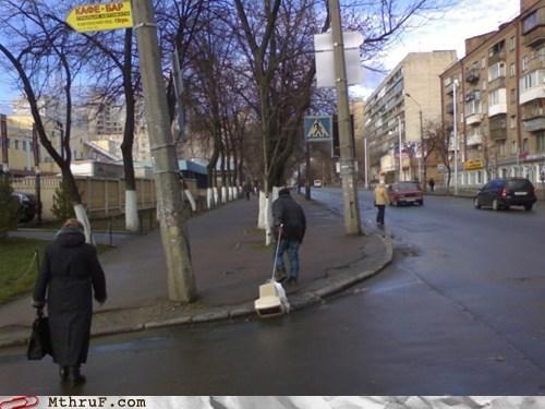 computer,dogs,leash,monitor,russia,walk