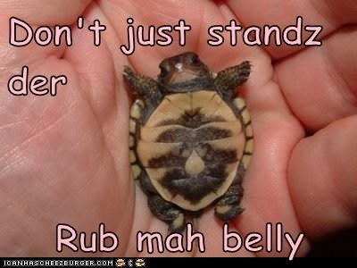 Don't just standz der  Rub mah belly