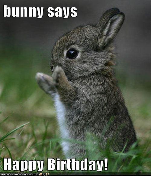 Happy Birthday Milli H8C6EA3F8