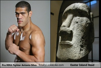 Pro MMA Fighter Antonio Silva Totally Looks Like Easter Island Head