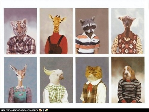 Animal School Pictures
