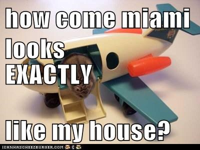 how come miami looks  EXACTLY like my house?