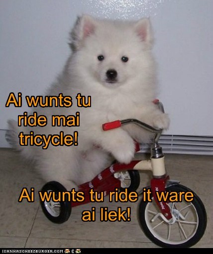 Cyoot Puppy ob teh Day: Ai wunts tu ride mai trike!