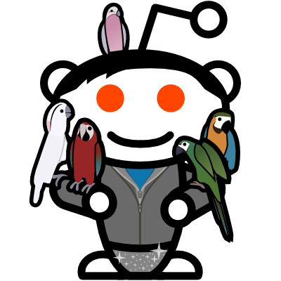 New Reddit CEO of the Day