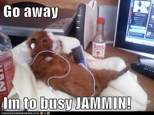 Go away   Im to busy JAMMIN!