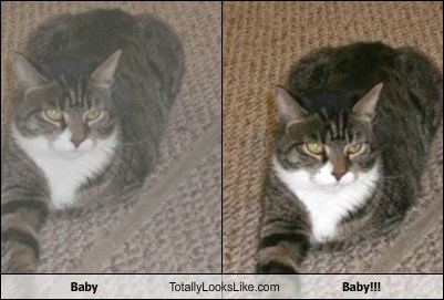 Baby Totally Looks Like Baby!!!