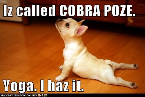 Iz called COBRA POZE.  Yoga. I haz it.