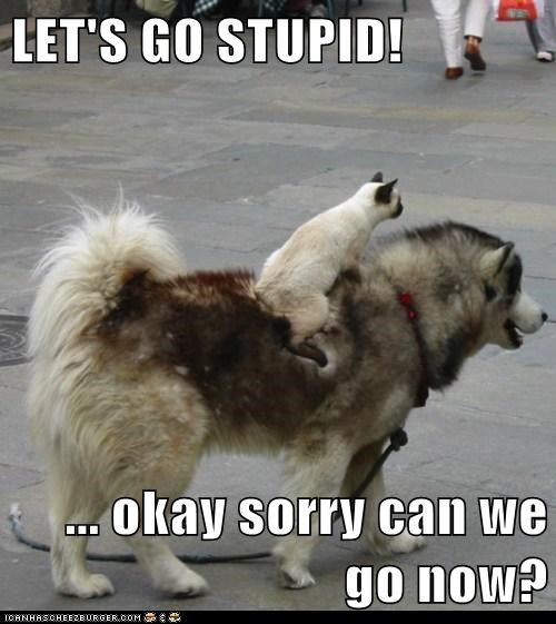 LET'S GO STUPID!  ... okay sorry can we go now?