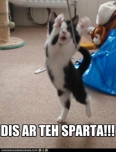 DIS AR TEH SPARTA!!!