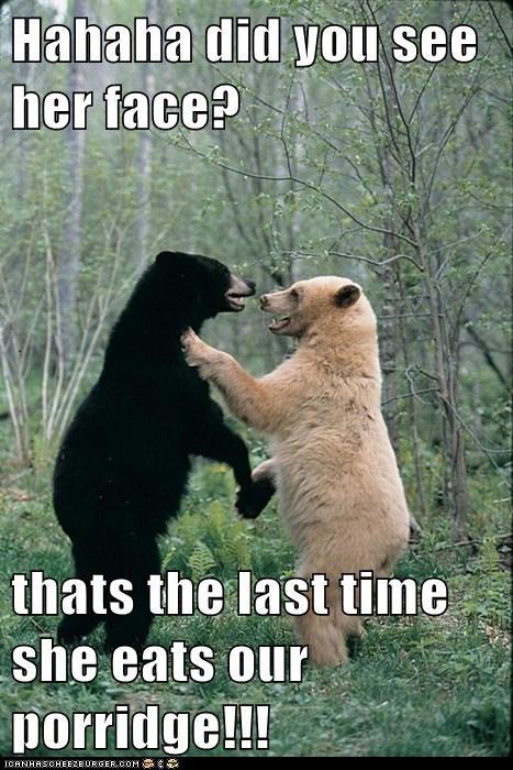 bears,best of the week,face,goldilocks,Hall of Fame,laughing,porridge,scaring