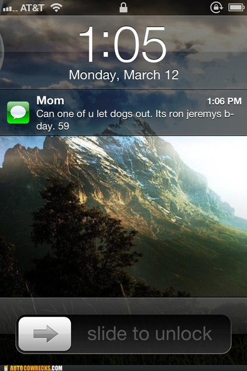 dogs,mom,parenting,pr0n,ron jeremy,wtf