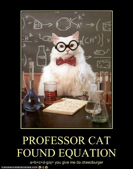 PROFESSOR CAT FOUND EQUATION