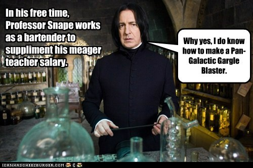 Even Hogwarts Teachers Need a Second Job