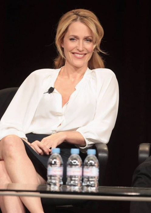 Gillian Anderson Comes Out of the Day