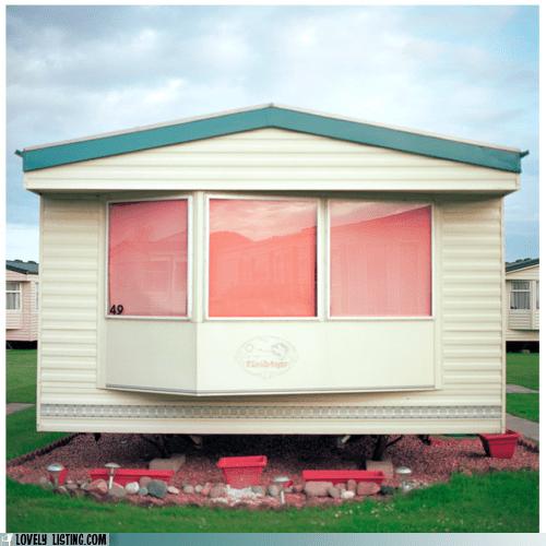 pink,pink flamingos,shades,trailers